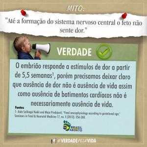 #VerdadepelaVida
